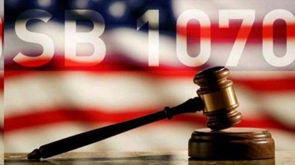 against arizona immigration law essays